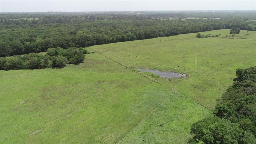61.15 Acre Cattle Ranch/Hunting Ranch just minutes from the historic city of Montgomery TX . Property has small 1 + acre lake and is accesed via Amberwood Drive and private easement. Whitetail deer and wild hogs are plentiful on the property that borders Lake Creek.