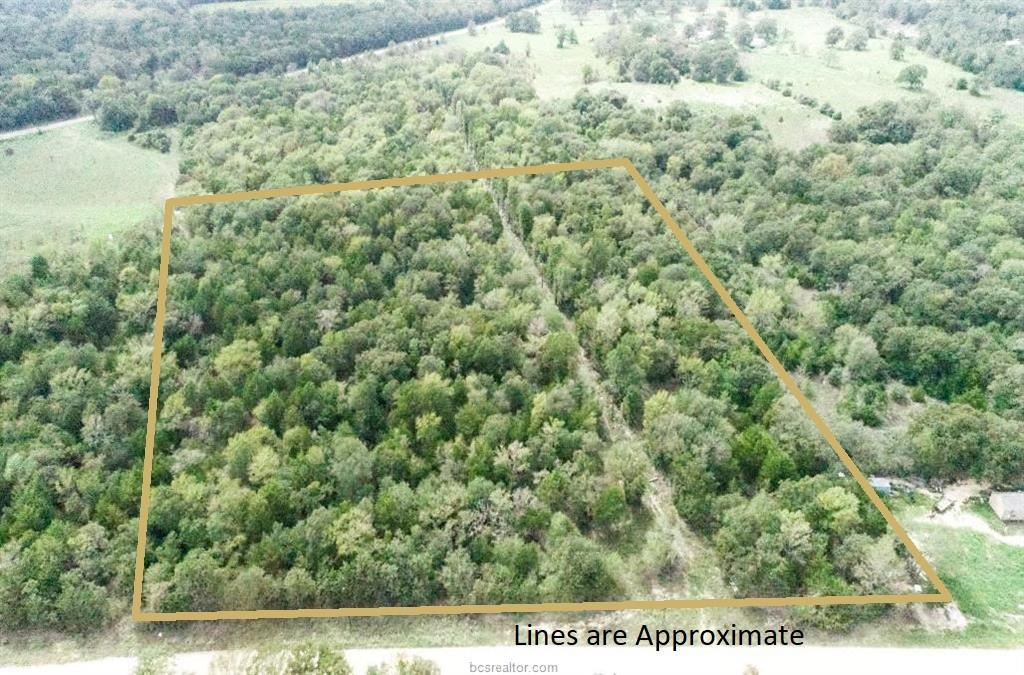 Looking for some acreage just outside town for your new homesite? Beautiful, wooded 7.5 acres with close proximity to FM 908 and just 10 minutes from Caldwell, 1 hour from Austin, 2 hours from Houston and just 30 minutes to Bryan-College Station! Area offers community water, electricity and all the amenities of country living. Come see today - this land is a steal at this price!