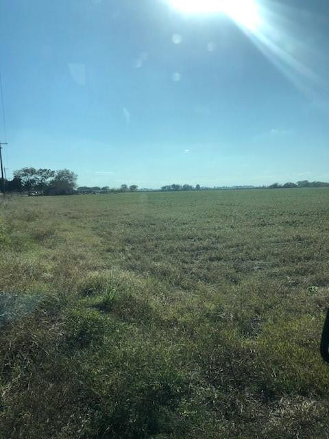 Perfect sized ranchette just outside of Wharton and only about an hour from downtown Houston! Property is NOT located in the flood plain (rare for this area).  Great road access and frontage (over 600 feet). Currently ag-exempt farmland. Survey is in attachments (Tract 2). 