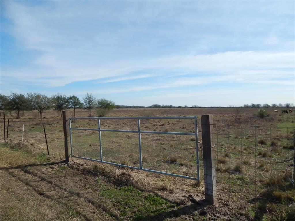 Over 12 Acres Waiting for YOU to Build Your New Home on with a Shop, Pool, Arena, Stalls, or Anything that Your Heart Desires. This Land is Located just a few Miles from Downtown Needville where there are some great shops, great restaurants, the library, and the elementary school. There are several Oaks planted on the property.