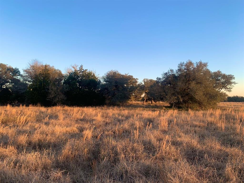 Conveniently located to allow for quick access to I-10 for easy commuting, this expansive property offers highly improved grasses, for ultimate hay fields or grazing.  Iconic colossal Live Oak trees are scattered throughout the front and create a heavy wood line along the northern boundary.  The back portion of the land climbs to the highest hilltop in the area.  Heavily wooded and accented with a pond, this hilltop creates a tranquil vista for miles.  Over 2200 feet of road frontage allows flexibility on entrance placement to build at one of the many idyllic homesites. The is the perfect property to build your cattle operation, create a superb horse property and ensure you have got all the space and freedom necessary for any recreational use.  Come enjoy the country!    Possibility of cutting subject tract up to 125 acres, or a bit smaller.