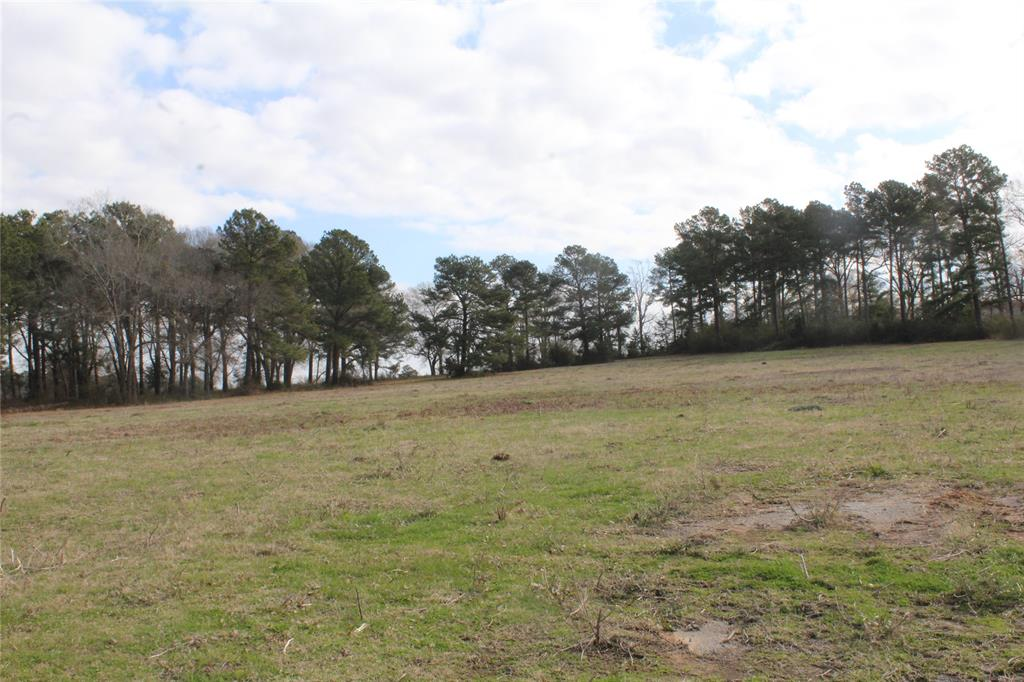 79.219 ACRES!   This large tract is located on Loop 304, with approximately 1,400 feet of frontage on Loop 304. This property would work for a wide range of uses and developments and has a nice sized pond. There is nearby shopping, restaurants, and commercial businesses. Houston County is a growing area in East Texas conveniently located 100 miles North of Houston and 140 miles South of Dallas. Call us today to schedule a private tour of this great property.