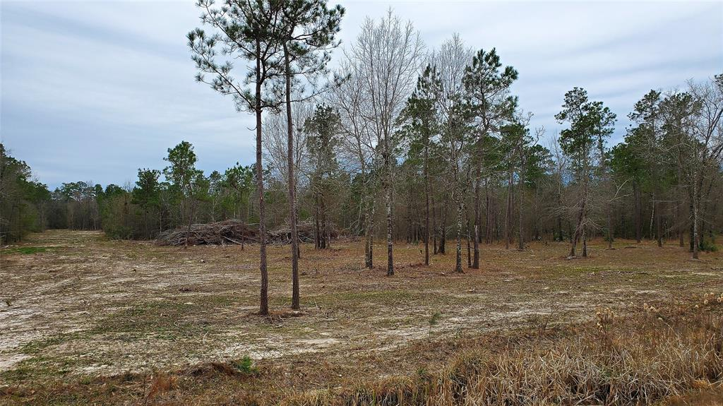 14.13 acres of unrestricted land within 2 miles of The Woodlands Mall, Just off I45. Ideal for warehouse, industrial or residential.