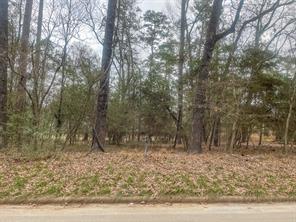 1852 East Lake, Huntsville, TX, 77340