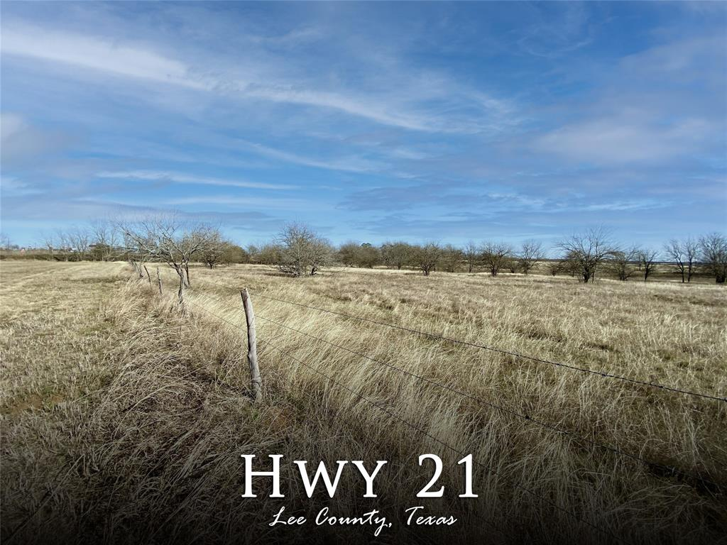 +/- 53 Un-restricted, Ag-exempt acres with Hwy 21 frontage. Property features *Rich soil *Bahia, Bluestem, and Coastal grasses *Nice sized Pond *5 strand barbed wire Perimeter Fencing. Currently used for Cattle Grazing and Hay Production. Commercial potential with Hwy frontage or several great Home Sites with Uncluttered Distant Views. Located in close proximity to Austin, College Station, Brenham, Caldwell, Giddings, Bastrop and a few minutes from Lake Somerville. Please call listing agent Katy Pugh for more information.