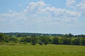 0031 Fm 149 - 31 Acres, Anderson TX 77830