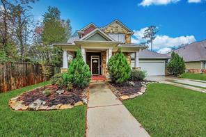 3 Mews Wood, The Woodlands, TX, 77381