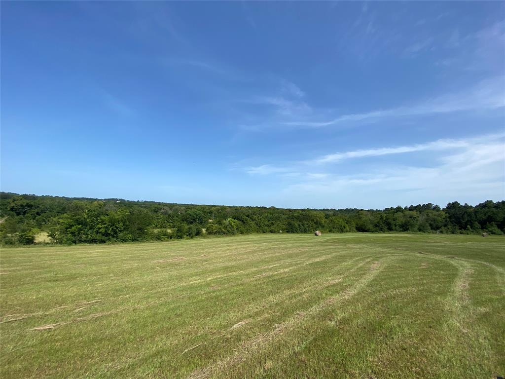 This beautiful 28 +/- acre hillside property is unrestricted and has approx 1000 ft of Road Frontage along FM 1486 with great views and elevation changes. Its located approx 1 mile south of the FM 1486 and Hwy 105 intersection and is located in the Montgomery ISD. The Bluejack National Golf Course is approx 2 miles south of the property and the pending Aggie Expressway is approx 7 miles. This is a multi-purpose property with several homesite locations for a small horse or cattle ranchette, recreational property as well as development or industrial use. There is a portion of the property along the eastern property line that is located in the flood plain. Located just minutes from shopping, entertainment and recreation on Lake Conroe and historic Montgomery yet still in the tranquility of the country. Commutes of approx one hour to Houston, College Station and Huntsville...travel to work, entertainment or access to your business is convenient. Give us a call to schedule your showing!