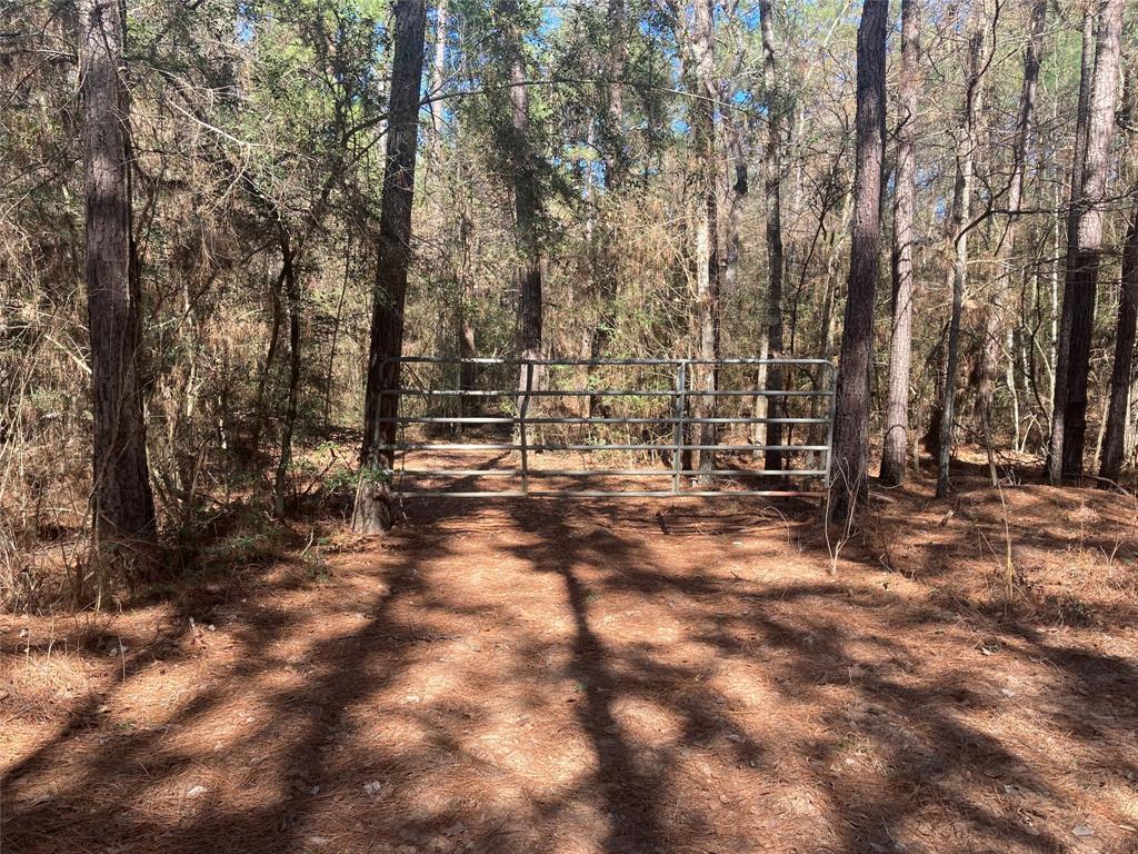 0 Deep Woods Ln, Plantersville, TX 77363