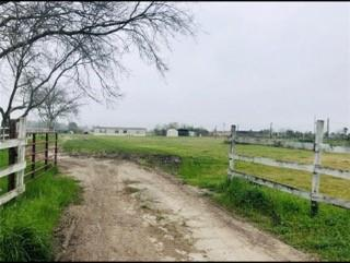 12 acres fenced with water-well one septic tank... *Mobile Homes are not include it...both mobile homes will be removed once offer is accepted.