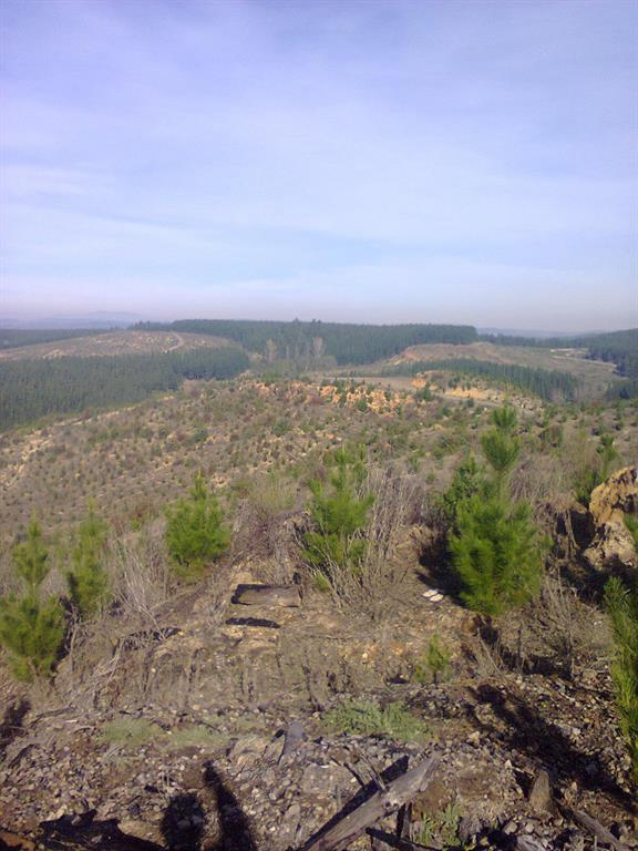 00 Cruce A 45, Other, Other N/A, ,Country Homes/acreage,For Sale,Cruce A 45,55103974