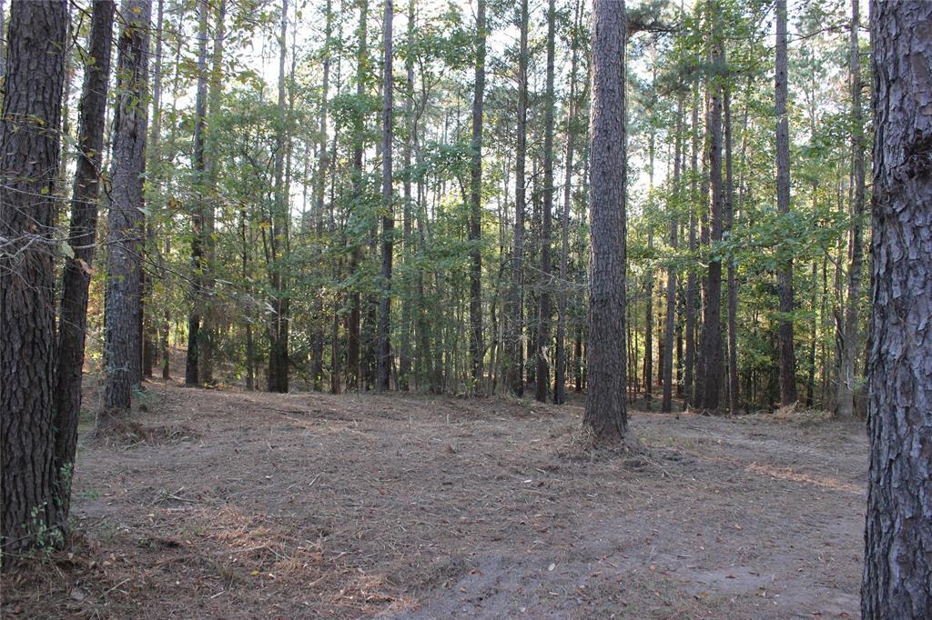 TBD Cross Creek 7 8 and 9 Trail, Goodrich, TX 77335