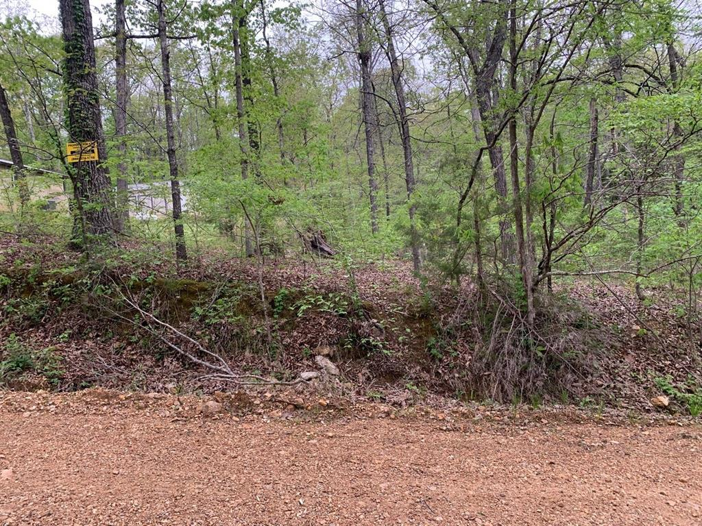 0 Lakeside Trail, Other, AR 72482