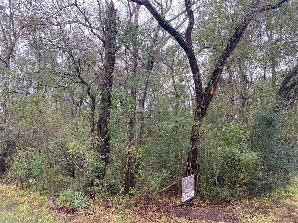 0 Buffalo Trail, Lake Jackson, Texas 77566, ,Lots,For Sale,Buffalo Trail,6460113
