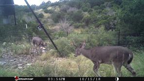 527 Pvt Road 1451, Del Rio TX 78840