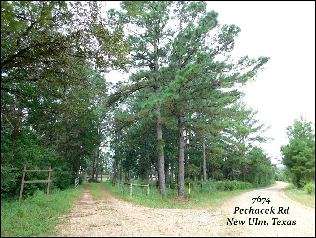 7674 Pechacek Road, New Ulm, TX 78950
