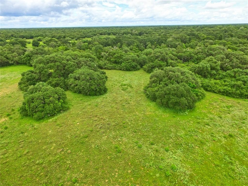 Located in Lavaca County +/-20 miles (30 min) southeast of Hallettsville at the end of CR 158, this 164.338 acres is an ideal recreational property for weekender, hunter & outdoorsman. Priced at $5,750/ac, this secluded property features mature Live Oaks, dense brush, abundant wildlife, ATV trails & seasonal Sandies Creek. The property is ag-exempt keeping taxes to a minimum, contains mostly loamy sand soil, has elevation ranging from 140'-170', has two pipelines crossing southeast corner, no oil/gas surface activity & partial FEMA flood plain along creek in northeast corner. This will be a conveyance of the Surface Estate only & no mineral or royalty rights will be conveyed. The property is located 1hr 35min from Buc-ee's in Katy, 62 miles from Victoria, 126 miles from San Antonio, 109 miles from Houston & 116 miles from Austin. The west boundary is high fenced, the north & south boundaries have barb wire fencing & the east boundary is unfenced. Hunting equipment doesn't convey.