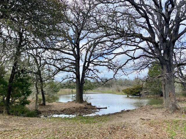 Located just 20 minutes from Giddings and halfway between College Station and Austin, this beautiful 11.8 acre property provides the opportunity to select and clear the perfect site for a home or weekend cabin. No restrictions. 