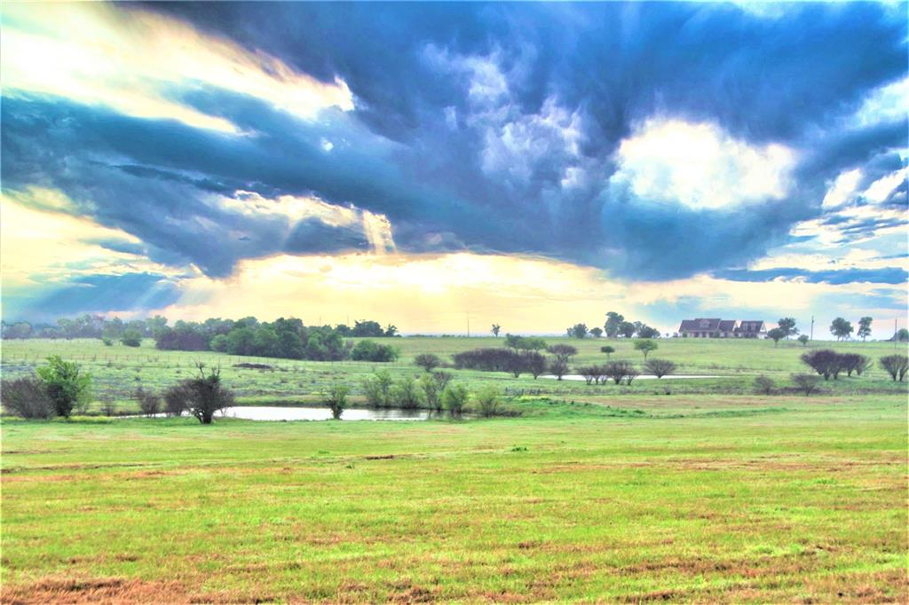 TBD Chadwick Hogan Road Road, Chappell Hill, Texas 77426, ,Country Homes/acreage,For Sale,Chadwick Hogan Road,82653743