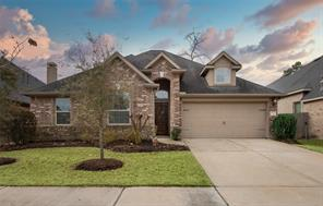 8127 Black Percher Street, Conroe, TX 77385