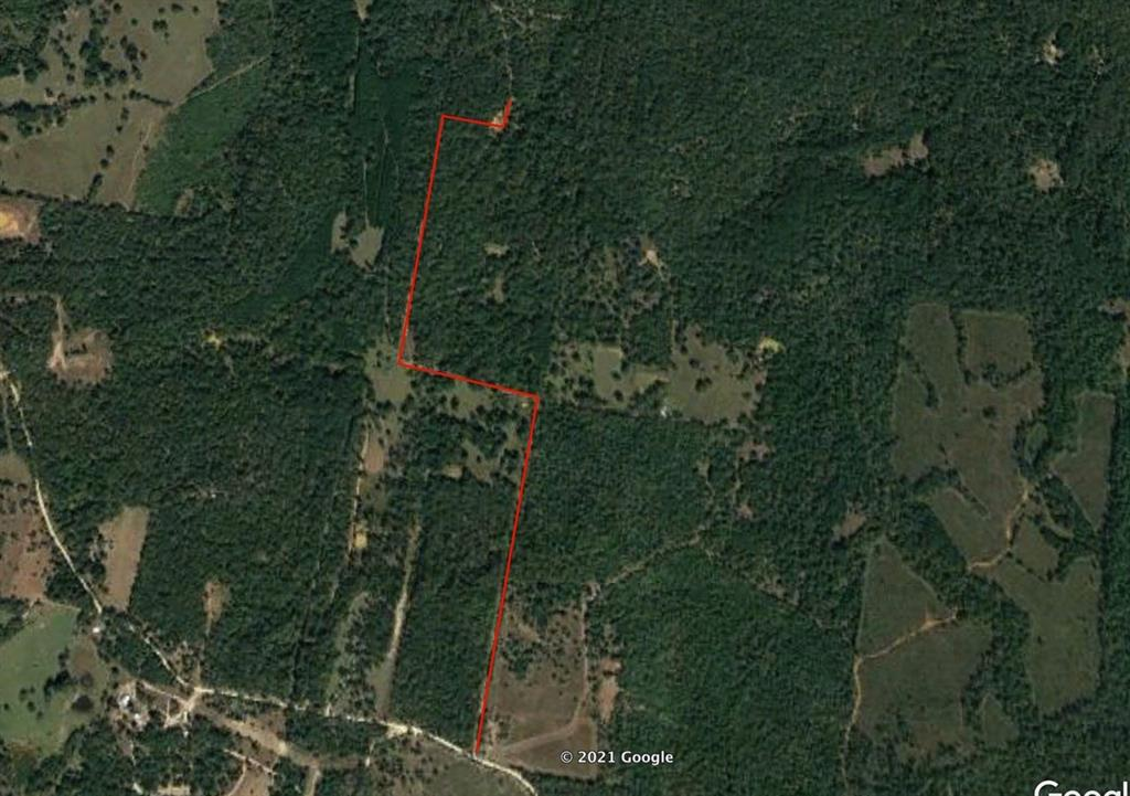 TBD County Road 317, Centerville, Texas 75833, ,Lots,For Sale,County Road 317,68242349
