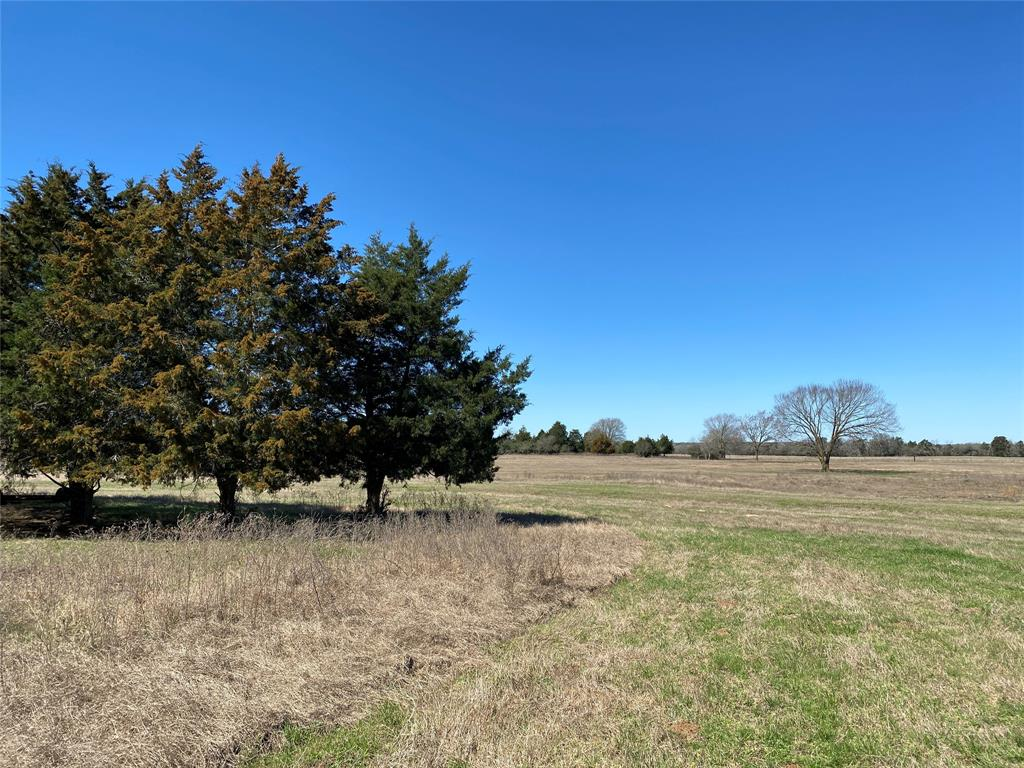 TRACT 1: +/-15.7 acres located west of Giddings, Lee County. The Manheim/Lincoln area is beautiful with it's lush fields and rolling terrain. Sandy loam soil, three ponds, and a mix of pasture and woods. Terrain slopes from front to back, with a gentle roll. Wildlife includes deer, wild hogs, birds, and more. AG exempt, has water and electric infrastructure, needs septic. +/-15.7 acres is part of the 50.7 acre main tract. Recently cleared with machinery, native grass will grow back this spring. Seller restrictions: site built homes only, no commercial.