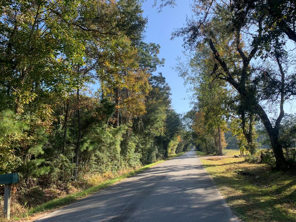 0 County Road 2294, Cleveland, Texas 77327, ,Lots,For Sale,County Road 2294,25602936