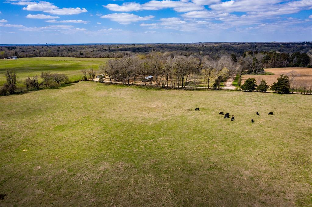 Located in scenic Palestine, this 7.49 acre tract is mainly cleared, with scattered hardwood, and has great homesite potential.
