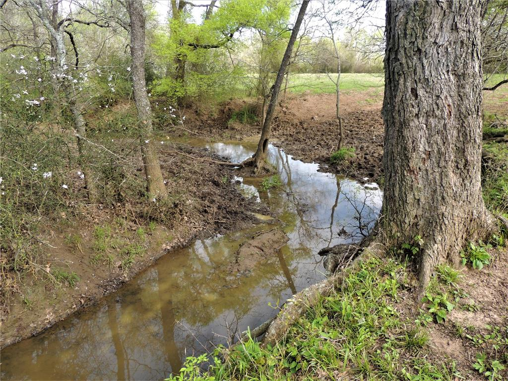 0 US Hwy 287, Crockett, Texas 75835, ,Country Homes/acreage,For Sale,US Hwy 287,46367844