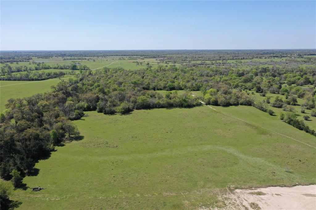 Pretty, partially wooded tract a little less than 10 miles from downtown Madisonville, with a small pond towards the front of the land.  It qualifies for timber exemption, with a nice homesite potential towards the back of the property.