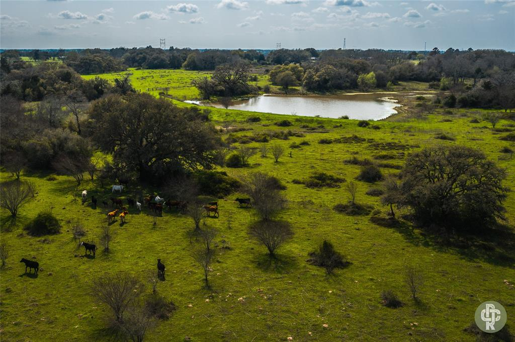 A great opportunity to own a ranch that is prime for recreational, grazing and homestead use alike. . Located ~2 miles east or Weimar, Texas and less than 1 hour to Houston,  and 1.5 hours to Austin and San Antonio, this is a blank canvas ready for new ownership to make their own. The property offers great access off of County Road 285 along with quality fencing and cross fencing, a nice mixture of pasture and wooded areas, huge live oaks , beautiful 1 acre stock tank and gently rolling terrain. The Primos Ranch is a clean, unimproved ranch offering great proximity to metropolitan areas, setting this ranch up nicely for either the full time resident or non-primary resident looking to put their personal touch on a true gem of a ranch!**NOTE** - Additional +/-70 contiguous acres available for purchase.