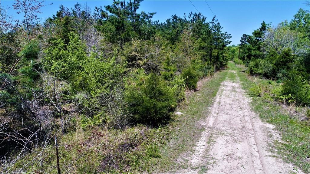 SECLUDED TRACT!   This 33.268-acre tract of land is the perfect place if you are looking for a secluded tract off the beaten path. It is located about 1.2 miles down a private road. Electric is available across from the front of the property. This would make a great weekend get-a-way and hunting tract. Give us a call today to schedule a private showing.