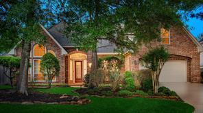 18 Herald Oak Court, The Woodlands, TX 77381