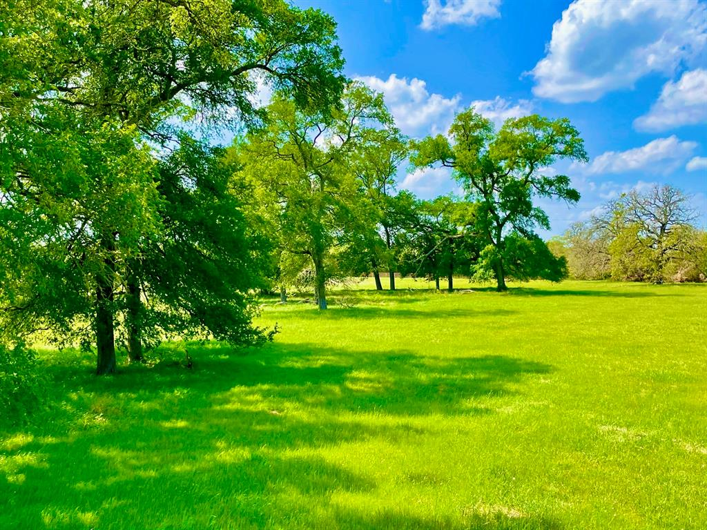 Your exceptional Texas country homestead awaits your vision on this prime 8.41 +/- acres of unspoiled countryside. Located in serene horse and cattle country in Burleson county, this land is an ideal mix of improved coastal bermuda pastures, intermixed with towering mature oak trees and densely wooded areas on the back acres of the land. Quality improvements abound with newly constructed five-strand barbed wire fencing on three sides of the land's perimeter with majestic 4 board equestrian fencing with a 24-foot recessed entry drive along the paved county road frontage. The land conveys with ag exemption in place and has light restrictions in place to secure the enjoyment of your Texas Country homestead for years to come. A short drive from Caldwell, Brenham, Lake Somerville and the action of SEC Country in College Station, the land also resides in a geographic sweet spot of Texas making most Houston and Austin approx 65 miles away or less. Additional acreage is available or coming.