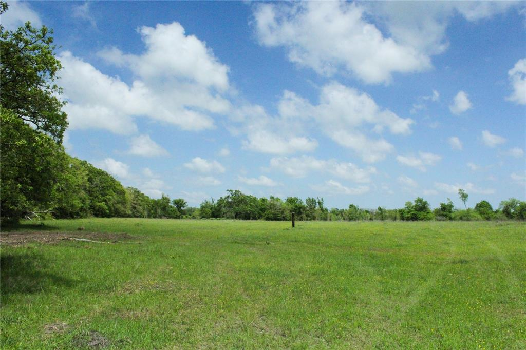 30 acres of ag exempt land. Beautiful, rolling terrain with natural grasses and native flowers. Mixed variety of mature and young trees. This property will also be retaining an electrical easement to allow for building further back on the property. Enjoy quiet country living tucked away behind the trees! This property is located in the highly desired Anderson-Shiro school district. Less than 45 minutes from Huntsville and College Station, and less than 10 minutes from the proposed High Speed Rail Depot, making commuting to Dallas or Houston a snap!