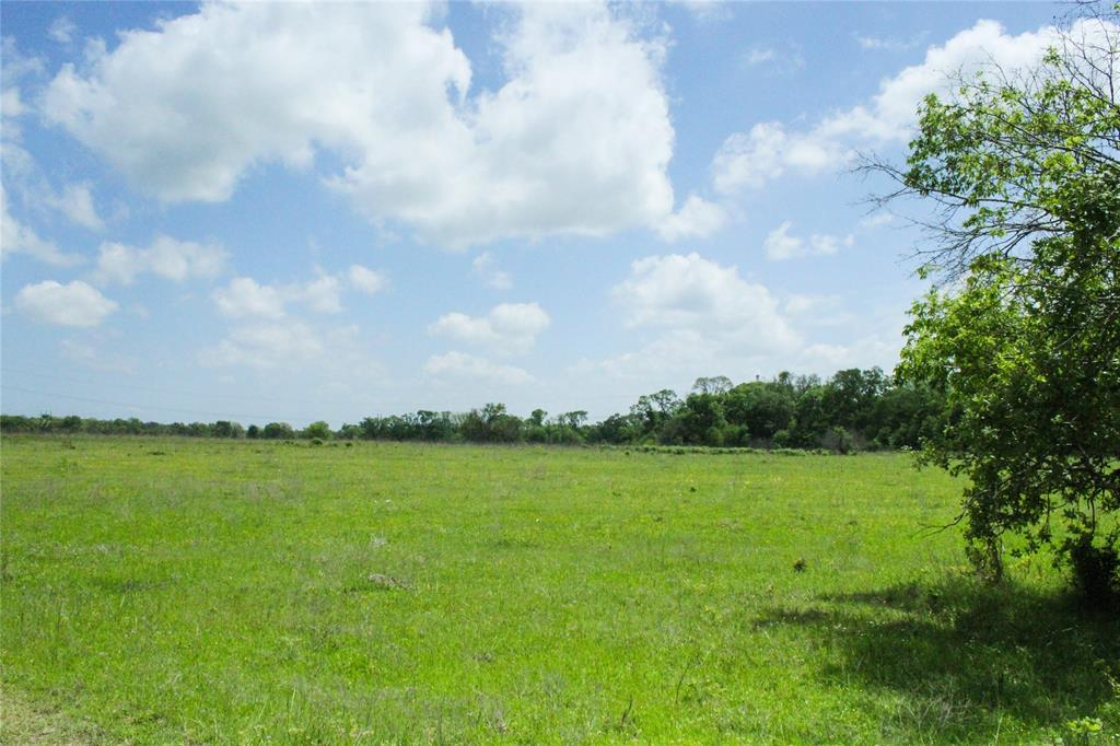 12.5 acres of ag exempt land. Beautiful, rolling terrain with natural grasses and native flowers. Mixed variety of mature and young trees. This property will also be retaining an electrical easement to allow for building further back on the property. Enjoy quiet country living tucked away behind the trees! This property is located in the highly desired Anderson-Shiro school district. Less than 45 minutes from Huntsville and College Station, and less than 10 minutes from the proposed High Speed Rail Depot, making commuting to Dallas or Houston a snap!