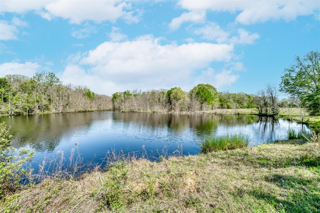 179 Acres located in Houston County! This property sets the bar high and offers many possibilities! Home to beautiful mature oak trees and two stocked ponds. Improved pastures host 60%, leaving a wooded haven perfect for hunting and recreation. A wet weather creek runs wild, and a stocked 1.5-acre pond holds memories ready to be made! Access is made easy with over 1150 ft. of road frontage and multiple entrances. This hidden paradise could easily be subdivided or kept for the family that loves to get away and spend time together!!