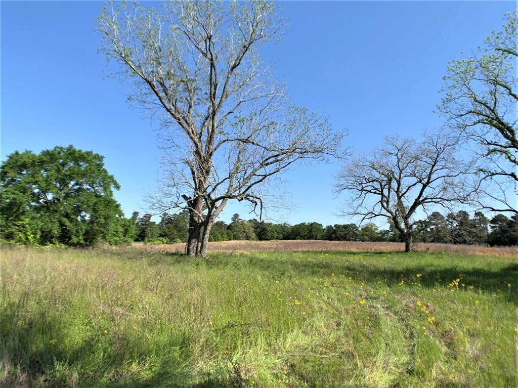 15 +/- beautiful UNRESTRICTED acres with approximately 1500' of FM 2620 frontage - Mostly cleared with plenty of trees for shade throughout and also bordering the property lines for privacy. Property is completely fenced around the perimeter. Located in the highly sought after Anderson-Shiro ISD. If you're looking for your secluded 10-20 acre ranch to call your own and enjoy, look no further!!!