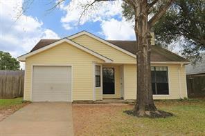 2314 Wild Olive Court, Katy, TX 77449