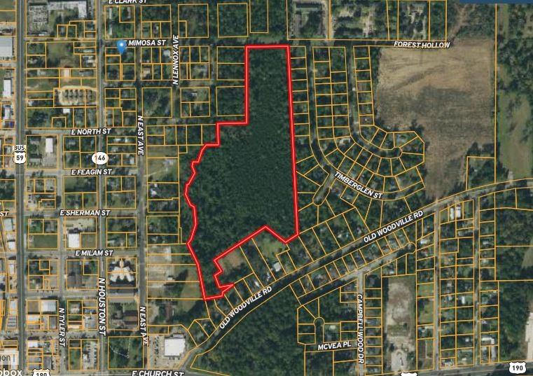 20 Wooded Acres on E Mimosa, three blocks from North Washington Avenue.  North of US 190 this property is a good location to be developed or an investment.  The property is 60 miles from IAH, 15 minutes to Naskila Gaming, and centrally located in the City of Livingston.