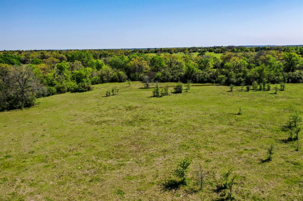 Ideal small ranch with fencing on west, south, and east sides. Property is predominantly open with areas of trees along creek. Has enough cover to hold wildlife providing whitetail deer, feral hogs and dove hunting opportunities. 