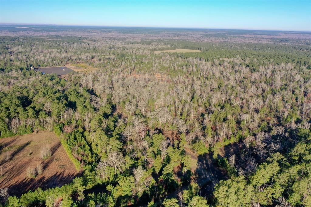 Beautiful 120 acre tract now available in Livingston! Completely ready for any activity you can imagine, including livestock operations, development opportunities, future Home-sites and many more. Featuring both open and wooded sections with various wildlife fencing with cross fencing in place, and the opportunity to purchase more surrounding land means that this is one property that won't last long. Offering an entrance via FM 942 and located only 15 minutes from Lake Livingston and 80 miles to Houston puts you in an extremely convenient location for amenities or showing and come see for yourself just how great this can be!