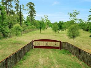15111 Stagecoach Road, Stagecoach, TX 77355