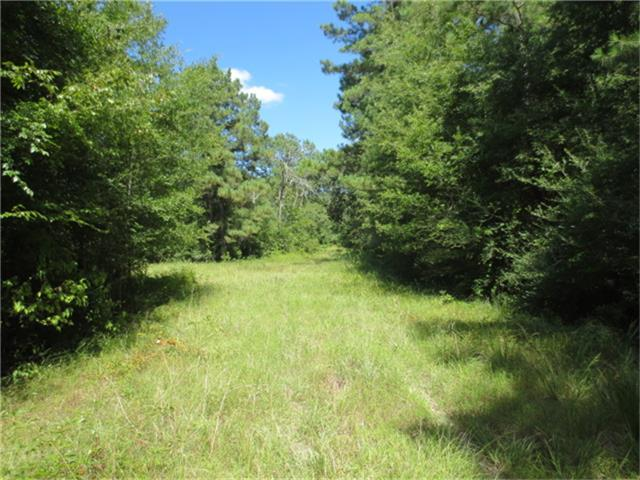 This 183 +- acres has a good mix of hardwoods and various ages of pine.The property has trails and right of ways to see the tract. It is currently being used for grazing and hunting. Ideal hunting with nice deer and lots of hogs. It is located near where Houston, Trinity and Walker Counties join. It is approximately 8 miles from Trinity and 9 miles from Lovelady.
