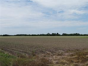 3046 County Road 356, Louise, TX 77455