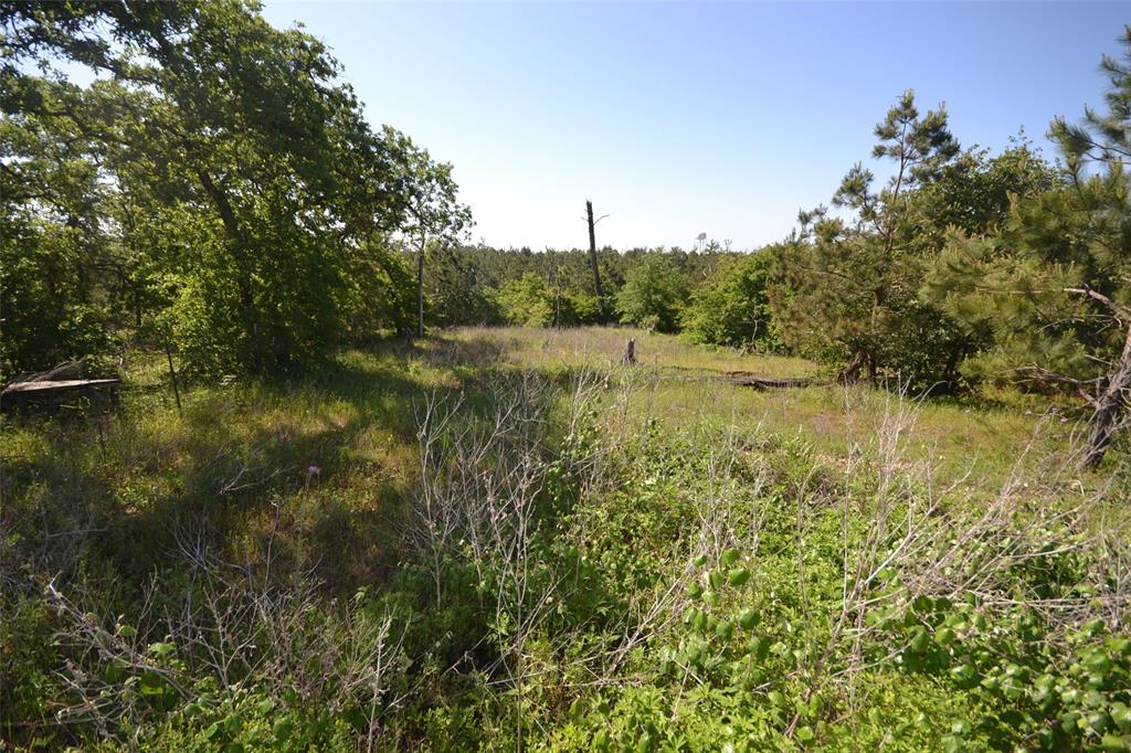 This beautiful 1.043 acre lot can be your dream come true! Plenty of room to build a custom home. Or just  enjoy the weekend out in the country. Property located in a cul de sac. The property is just a short 30 minute drive north takes you into beautiful Austin with its unlimited outdoor recreational and cultural activities.