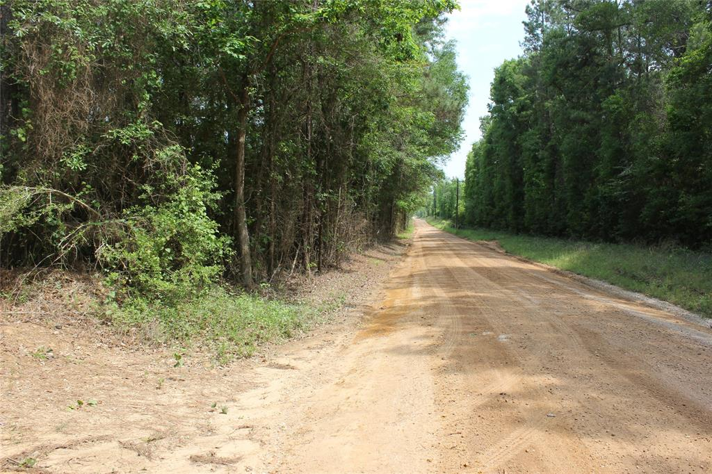 Come build your new home on this beautiful 20 acre tract.  The front of the property features mature pine timber while the back of the tract has pine timber that was recently thinned for the first time.  The land is in the Big Sandy School district.  Enjoy the peace and quiet of country living.