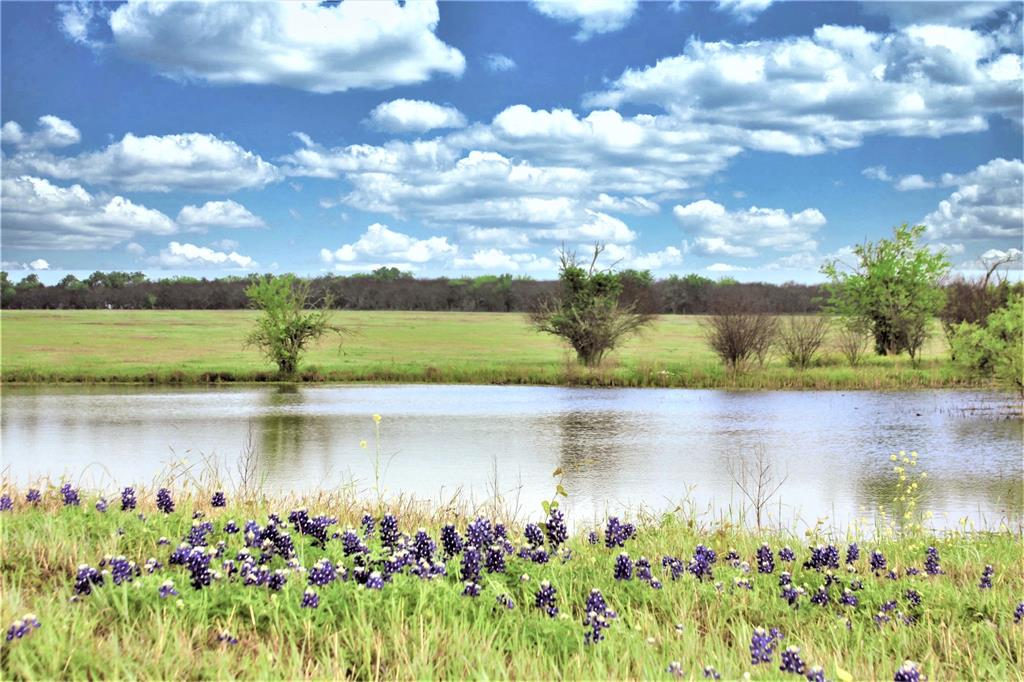 Hilltop future homesite with 360° views for miles of surrounding pastureland and pond!  Rare +/- 31 Acre build-site for your future home or country weekend retreat perched atop a hill overlooking a large pond and views or the rolling hills of Chappell Hill, Washington County. The views of the pastures full of bluebonnets and charming pond are perfect for serene, country living. Partially fenced, beautiful new gated entrance on paved county road. Ag Exempt. No Floodplain.  Bluebonnet electric available. Seller will convey Mineral Rights.  Located minutes from historic Chappell Hill and 15 minutes from Brenham. Just a short (roughly 30 minute) drive to Highway 99 providing easy access to Houston/Katy areas and 45 minutes to Bryan/College Station.  Additional acreage available for purchase. Acreage Subject to new survey.