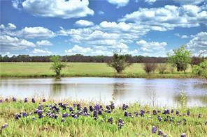 TBD Chadwick Hogan Road Road, Chappell Hill, TX 77426