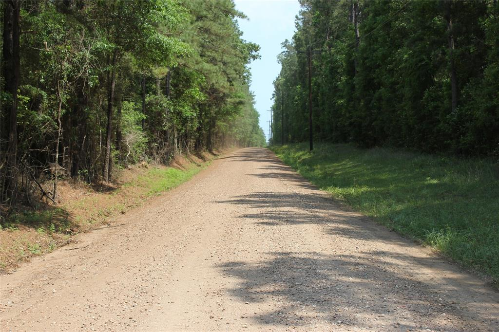 Come build your new home on this beautiful 15 acre tract.  The front of the property features mature pine timber while the back of the tract has pine timber that was recently thinned for the first time.  The land is in the Big Sandy School district.  Enjoy the peace and quiet of country living.  More acreage can be purchased! Come see today.